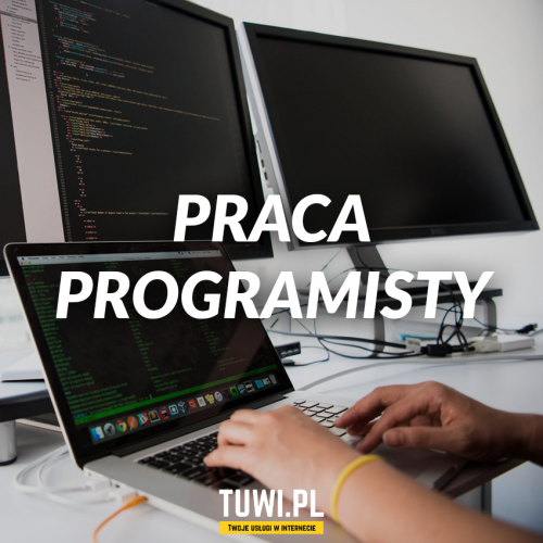 Programista / web developer...
