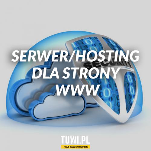 Serwer/hosting dla strony www